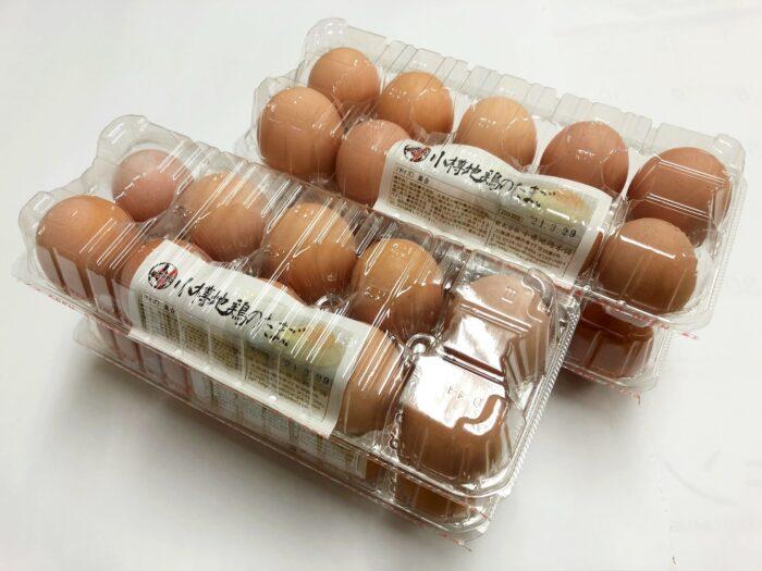 (終了しました)希少『小樽地鶏のたまご』春季特別価格で販売中!